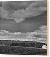 Keuka Landscape Vi Wood Print by Steven Ainsworth