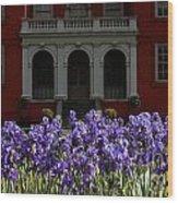 Kew Garden Irises Wood Print