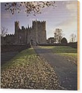 Kilkea Castle, Co Kildare, Ireland Road Wood Print
