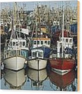 Kilkeel, Co Down, Ireland Rows Of Boats Wood Print