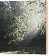 Killarney National Park, Co Kerry Wood Print