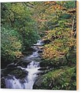 Killarney National Park, Ring Of Kerry Wood Print