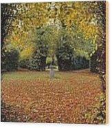 Killruddery House And Gardens, Bray, Co Wood Print