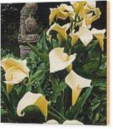 Kilmokea Country House And Gardens, Co Wood Print