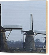 Kinderdijk Windmills 2 Wood Print