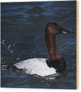 King Of Ducks Wood Print