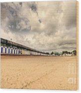 Kinlet Hall At Goodrington Sands Wood Print