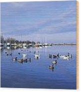 Kinnego Marina, Lough Neagh, Co Antrim Wood Print
