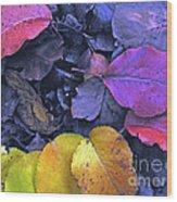 Kiss Of Fall Wood Print