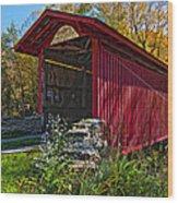 Kissing Bridge 2 Painted Wood Print