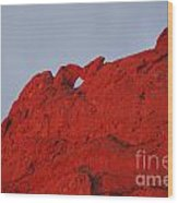 Kissing Camels On Fire Wood Print