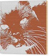 Kit Kat Wood Print