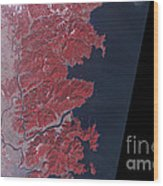 Kitakami River, Japan, Before Tsunami Wood Print by National Aeronautics and Space Administration