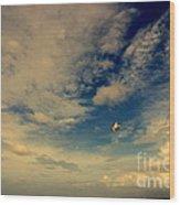 Kite At Folly Beach Near Charleston Sc Wood Print