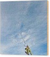 Kite Board Wood Print