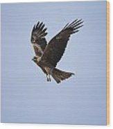 Kite In Flight Wood Print