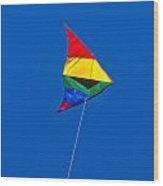 Kite  Wood Print