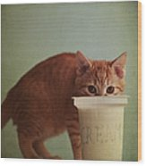 Kitten Eating From Big Pot Of  Cream Wood Print by By Julie Mcinnes