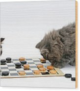 Kittens Playing Checkers Wood Print