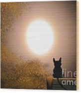 Kitty And The Moon Wood Print