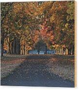 Knox Fall 8554 Wood Print