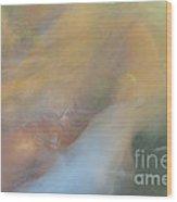 Koi Fish 01 Wood Print