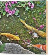 Koi Fish Poses Wood Print