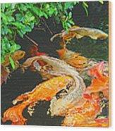 Koi Joy Wood Print