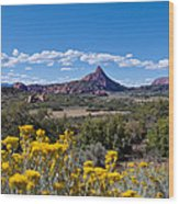 Kolob Terrace Afternoon Wood Print