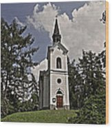 Kostel Panny Marie Lourdske Wood Print