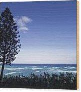 Kualoa Ranch 6 Wood Print