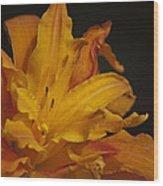 Kwanso Daylily Ruffles Wood Print