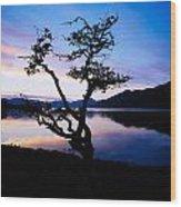 Kylemore Lake, Connemara, Co Galway Wood Print