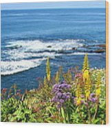 La Jolla Coast Wood Print