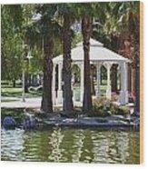La Quinta Park Summer Wood Print