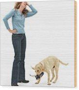 Labrador Golden Retriever Pup Chewing Wood Print