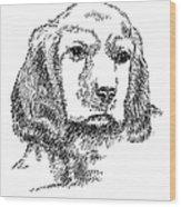 Labrador-portrait-drawing Wood Print
