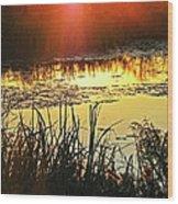 Lacassine Sundown Wood Print