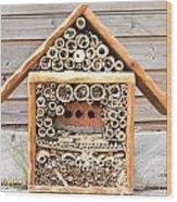 Lacewig House Wood Print