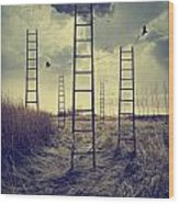 Ladders Reaching To The Sky In A Autumn Field Wood Print