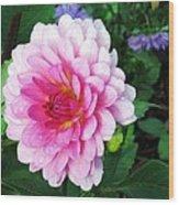 Lady Dahlia Wood Print