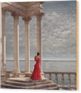 Lady In Red Gown By The Sea Wood Print