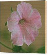 Lady Petunia Wood Print