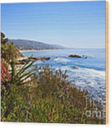 Laguna Beach California Coastline Wood Print