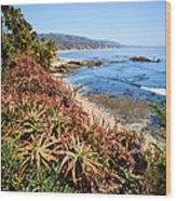 Laguna Beach Coastline Photo Wood Print