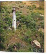 Laguna Beach Light Tower Wood Print