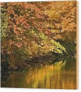 Lake And Forest In Autumn Wood Print