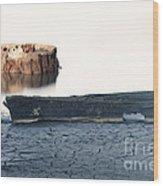 Lake Bottom Boat Wood Print by Ron Hoggard