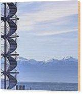 Lake Constance Friedrichshafen Wood Print