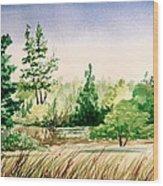 Lake County Landscape Wood Print
